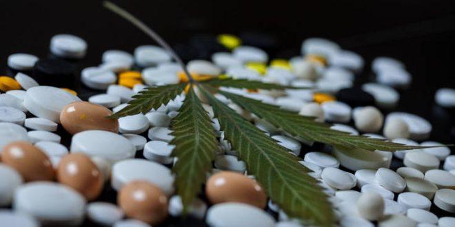 ΕΟΦ: Προσοχή στα «θαυματουργά» προϊόντα φαρμακευτικής κάνναβης