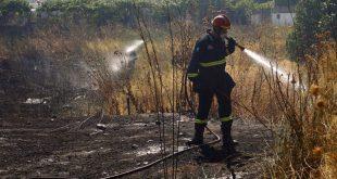 Φωτιά στην περιοχή Λευκοχώρι της Ηλείας