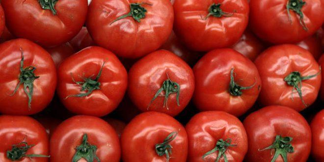 Τι θρεπτικά συστατικά μας προσφέρει η ντομάτα