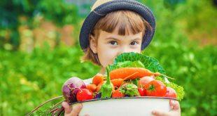 Τι προσφέρουν οι βιταμίνες του συμπλέγματος Β