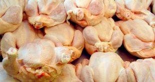 Εντοπίστηκαν 110 κιλά ακατάλληλα κοτόπουλα σε ψητοπωλείο στον Πειραιά