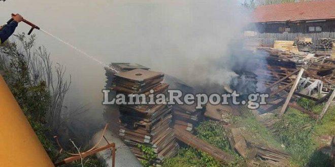 Λαμία: Συναγερμός για φωτιά σε εργοστάσιο ξυλείας