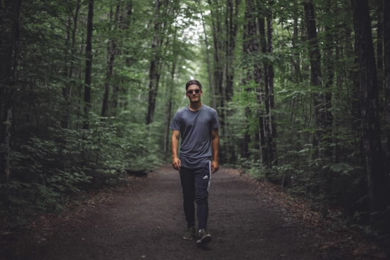 WALKING FOREST