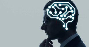 Νέα πρωτοποριακή μελέτη για την αναγέννηση του νευρικού ιστού