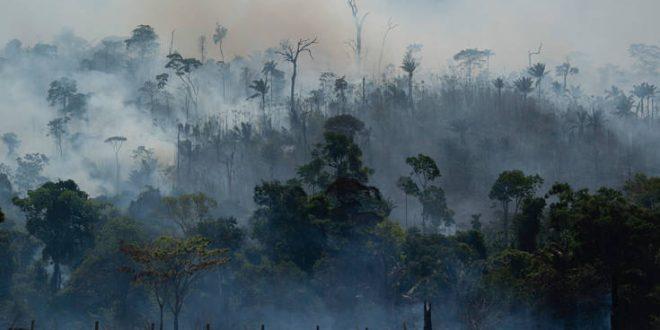 Ο υψηλότερος αριθμός πυρκαγιών τα τελευταία 13 χρόνια καταγράφηκε τον Ιούνιο στον Αμαζόνιο