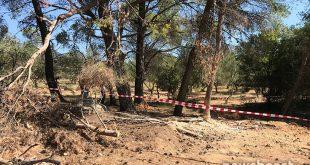 Βαρυμπόμπη: Οι πρώτες εικόνες από το σημείο που βρέθηκαν νεκροί οι 3 άνδρες