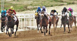 Markopoulo Park: Τζακ ποτ 100.000 ευρώ στο ΣΚΟΡ 6
