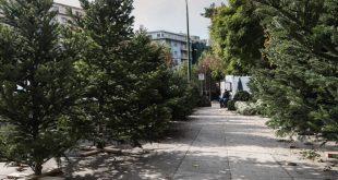 Παίρνουν τις θέσεις τους οι ελατοπαραγωγοί του Ταξιάρχη - «Πράσινο φως» από τη γραμματεία Εμπορίου